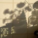 Kitchen shadow